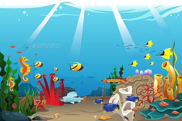 Marine Life - Backgrounds Decorative