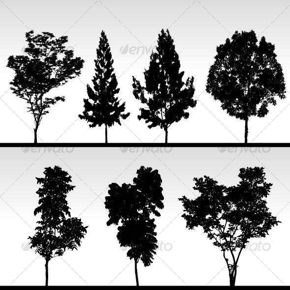 Tree Silhouette Vector - Nature Conceptual