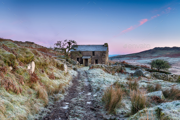 Frosty Morning on the Moor - Stock Photo - Images