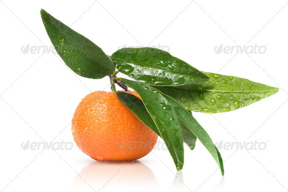 Tangerine with green leaves and water drops isolated on white - Stock Photo - Images