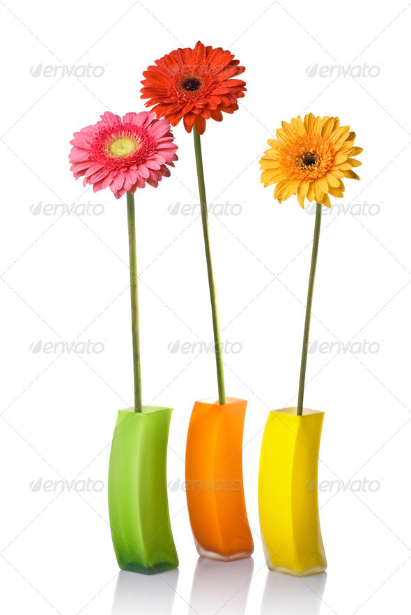 Bouquet from daisy-gerbera in glass vase isolated on white - Stock Photo - Images