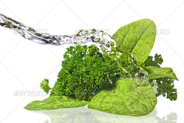 Bouquet of parsley and spinach isolated on white - Stock Photo - Images