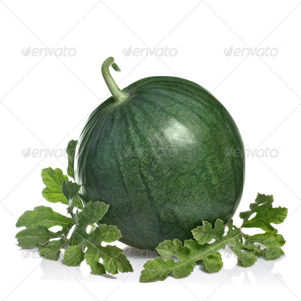 watermelon with leaves isolated on white - Stock Photo - Images
