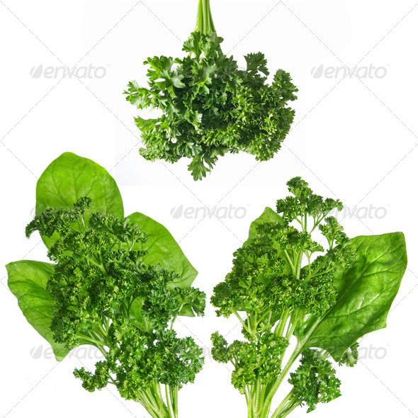 green spinach and parsley isolated on white - Stock Photo - Images