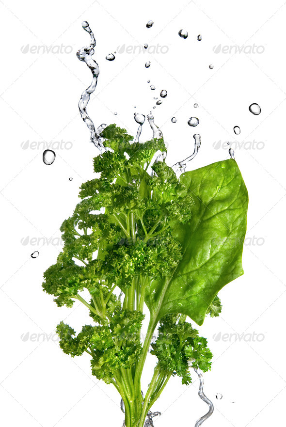 water drops on green spinach and parsley isolated on white - Stock Photo - Images