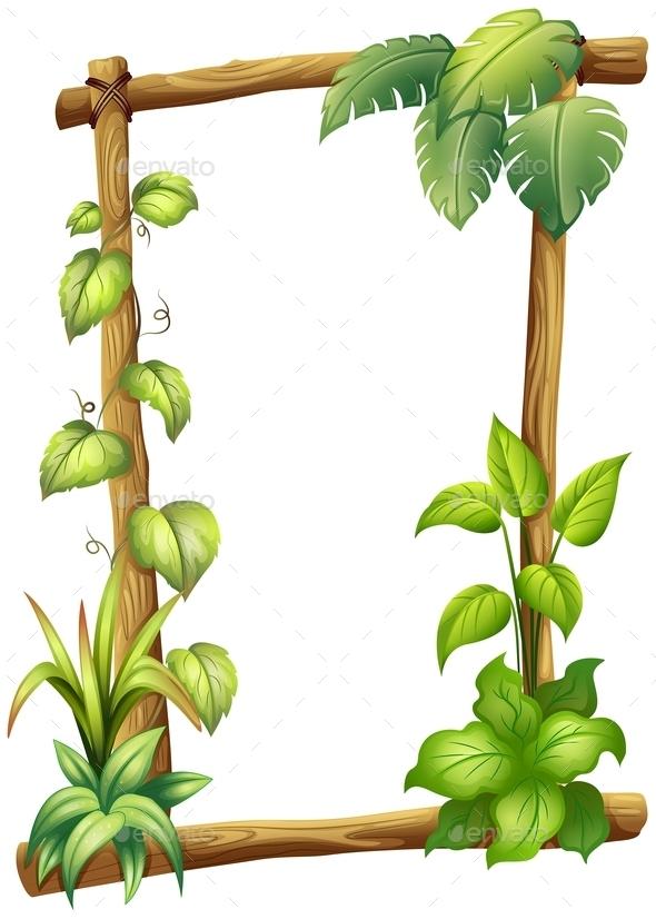 Vine Plant  - Flowers & Plants Nature