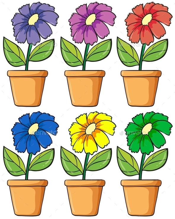 Pots with Flowering Plants  - Flowers & Plants Nature