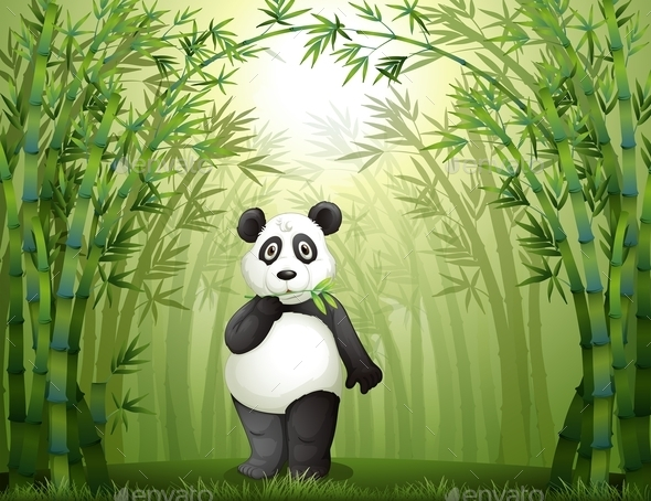 Panda in the Bamboo Forest  - Animals Characters