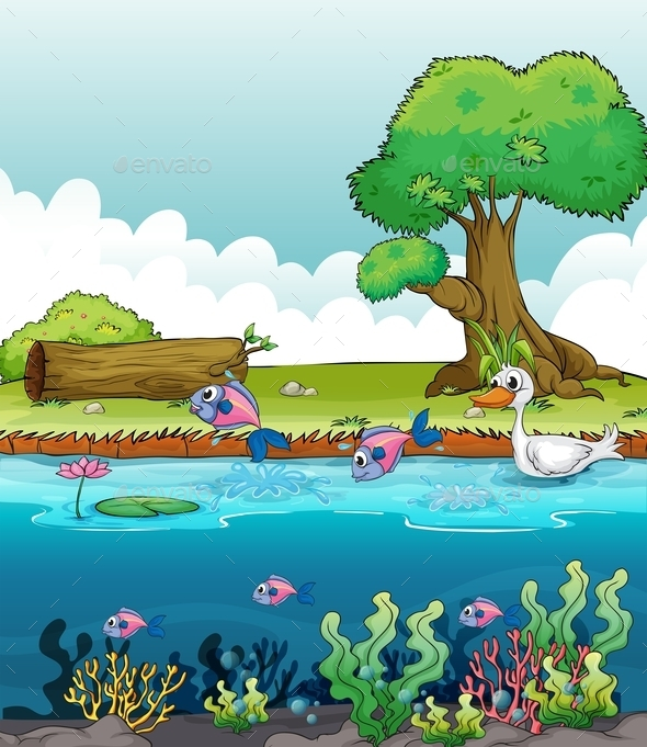 Sea Creatures with a Duck - Animals Characters