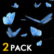 Butterfly Swarm - Blue Adonis - Pack of 2 - VideoHive Item for Sale