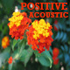 Positive Acoustic Pack - AudioJungle Item for Sale