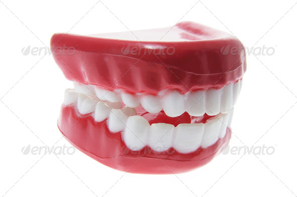 Artificial Dentures - Stock Photo - Images