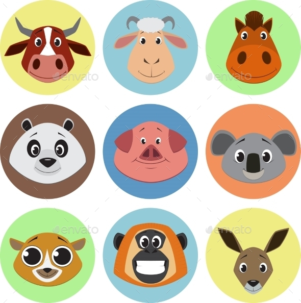 Collection of Animals - Animals Characters