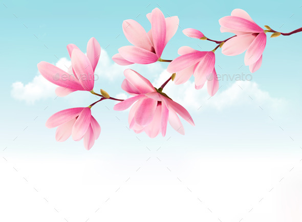 Valentine Background with Pink Flowers - Flowers & Plants Nature