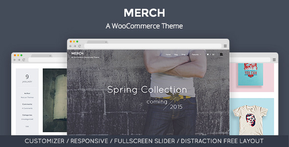 Merch: A WooCommerce WordPress Theme