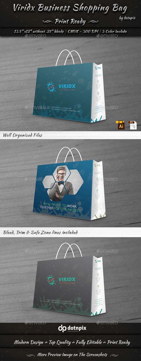 Viridx Business Shopping Bag - Packaging Print Templates