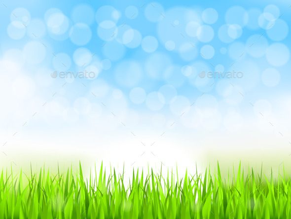 Green Grass and Blue Sky - Nature Conceptual