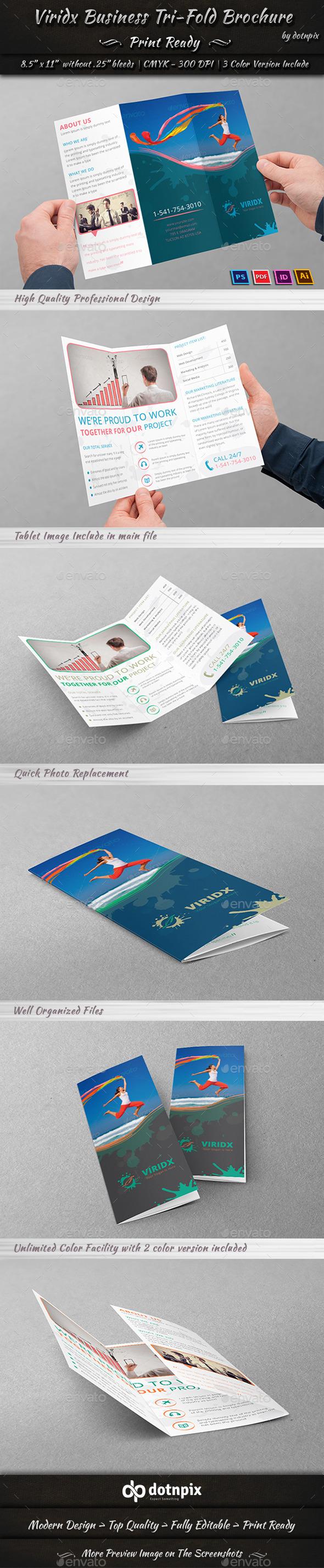 Viridx Business Tri-Fold Brochure - Corporate Brochures