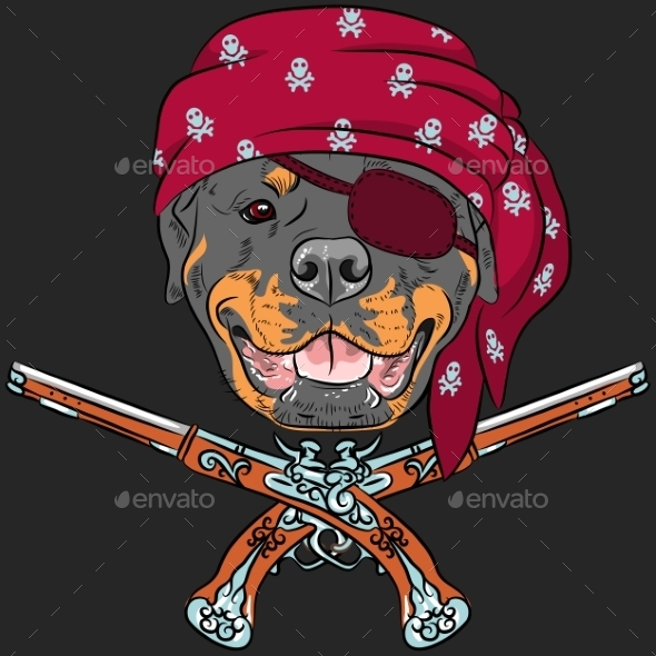 Rottweiler Pirate with Pistols - Animals Characters