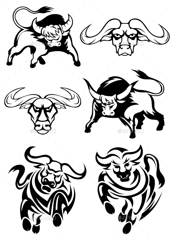 Bulls or Buffaloes - Animals Characters