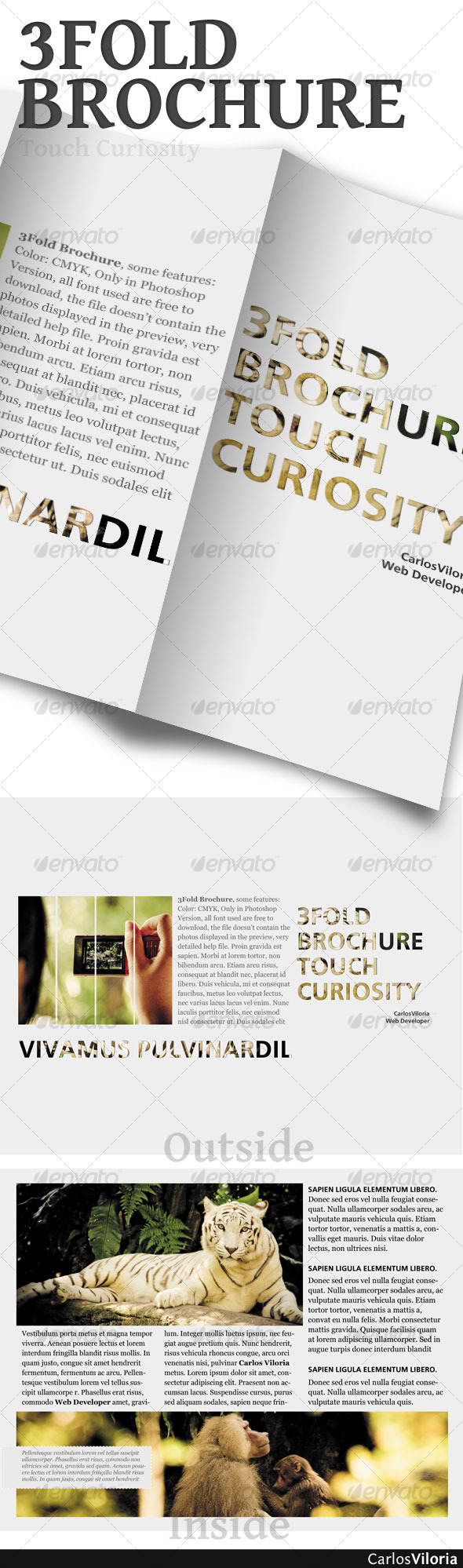 3 Fold Brochure - Corporate Brochures