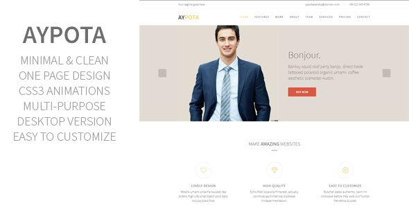 Aypota – One Page Corporate Muse Template