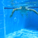 Underwater Swimming 14 - VideoHive Item for Sale