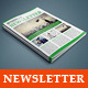 InDesign - Corporate Business Newsletter Template - GraphicRiver Item for Sale