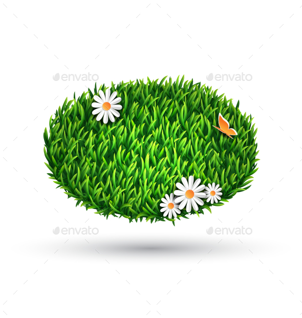 Green Grass Oval with Chamomiles and Butterfly - Flowers & Plants Nature