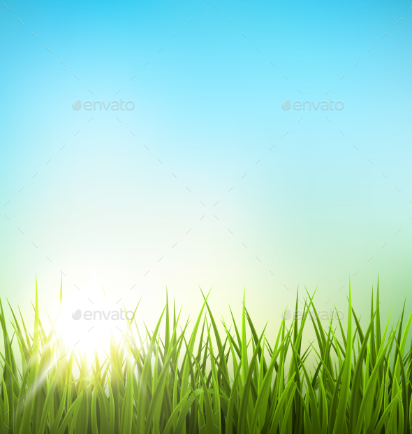 Green Grass Lawn with Sunrise on Blue Sky - Backgrounds Decorative