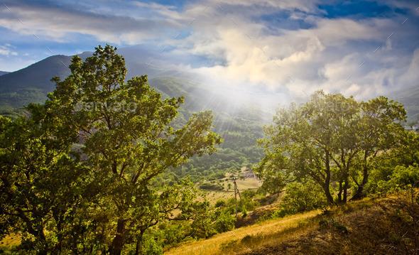 beautiful landscape - Stock Photo - Images