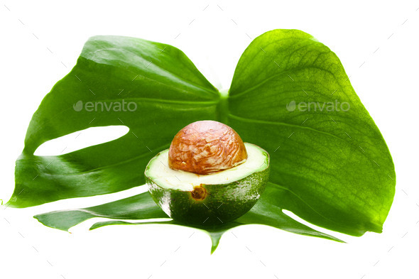 half of an avocado - Stock Photo - Images