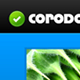 Corodo PSD Template - ThemeForest Item for Sale