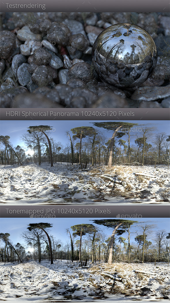 HDRI - Winter Forest - 3DOcean Item for Sale