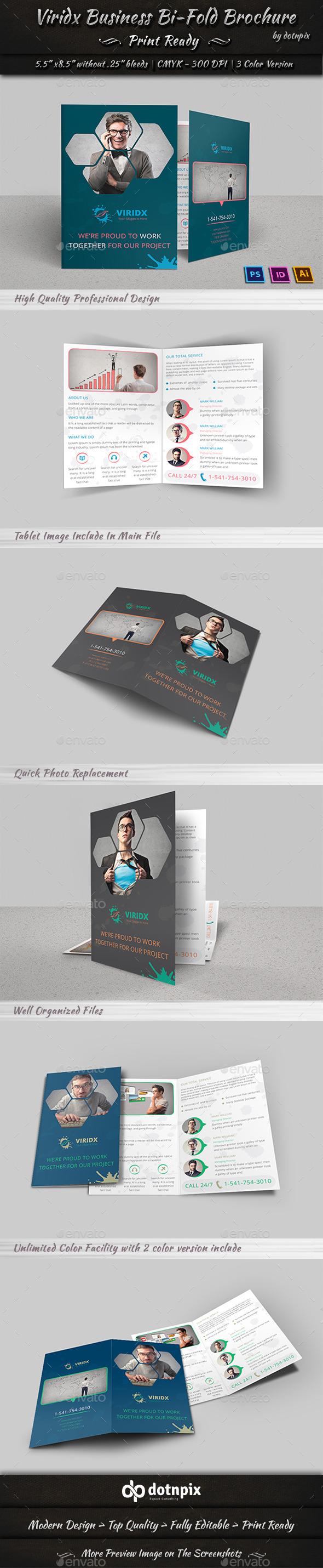 Viridx Business Bi-Fold Brochure - Corporate Brochures