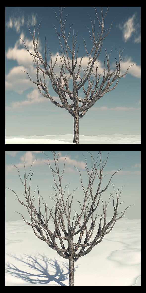 Winter Tree 2 - 3DOcean Item for Sale