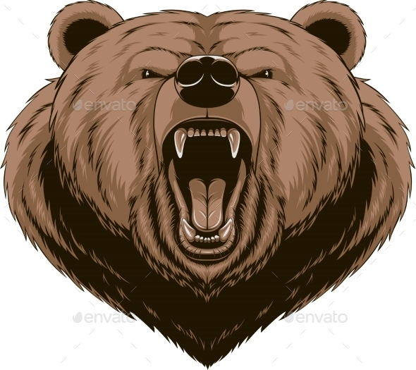 Angry Bear Head Mascot - Animals Characters