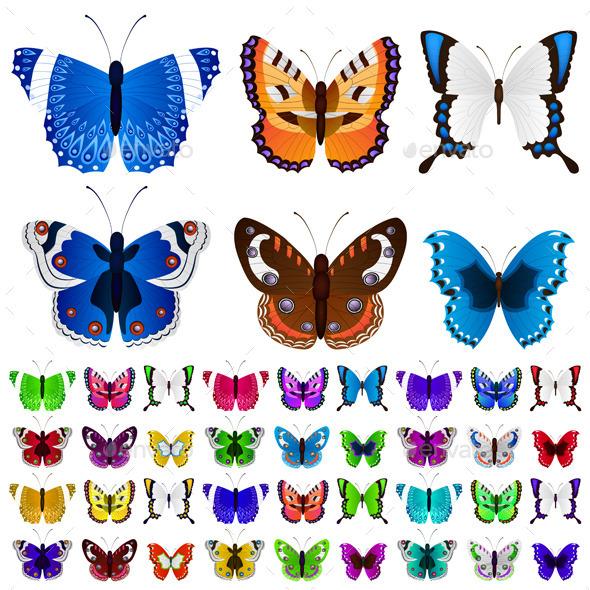 Set of Colorful Butterflies - Nature Conceptual