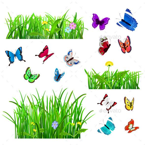 Green Grass and Butterflies - Flowers & Plants Nature