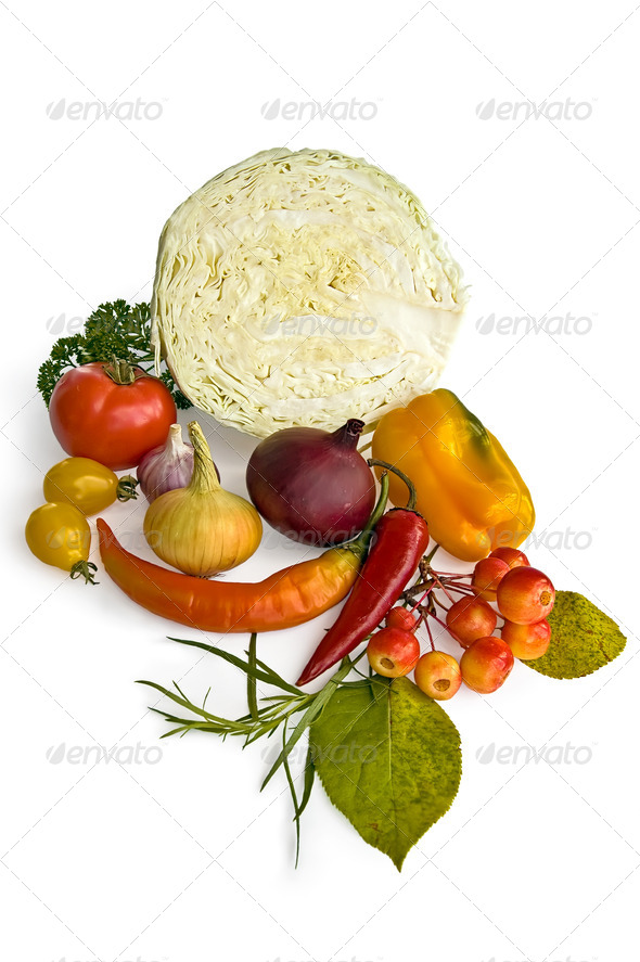 Cabbage and Vegetables - Stock Photo - Images