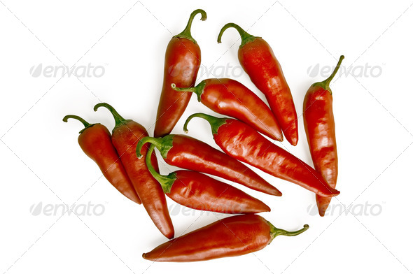 Chilli - Stock Photo - Images