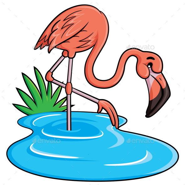 Flamingo Cartoon - Animals Characters