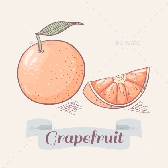 Grapefruit - Food Objects