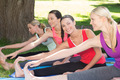 Fitness group doing yoga in park on a sunny day - PhotoDune Item for Sale