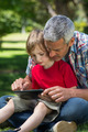Happy father using tablet pc with his son on a sunny day - PhotoDune Item for Sale