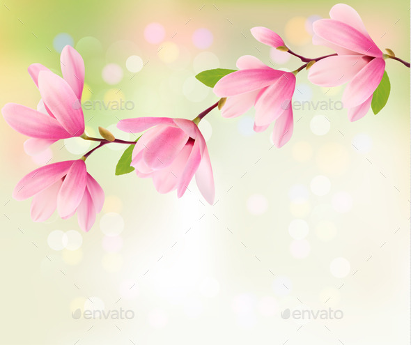 Spring Background with Blossom of Flowers - Flowers & Plants Nature