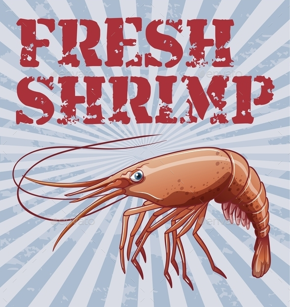 Shrimp - Animals Characters
