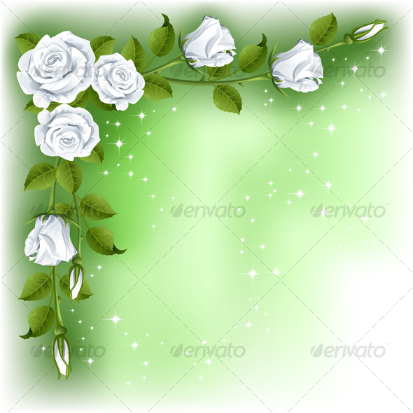 Background with roses - Characters Vectors