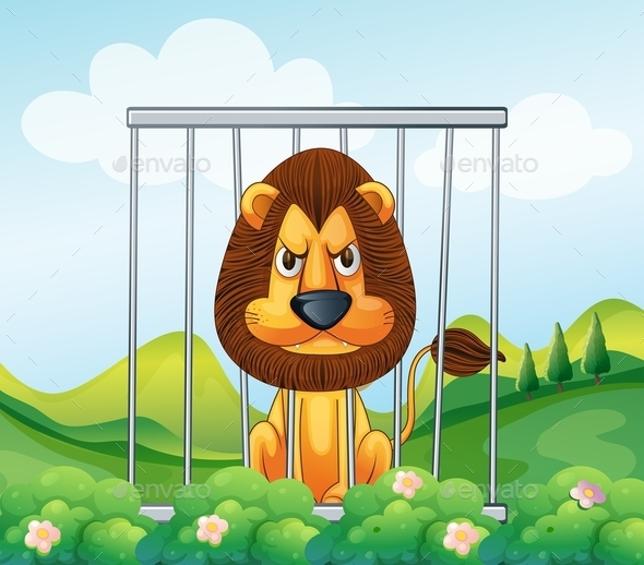Lion in a Cage  - Animals Characters