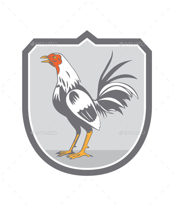 Cockerel Rooster Standing Retro Shield  - Animals Characters